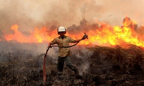 Wildfires across Indonesia threatening inhabitants