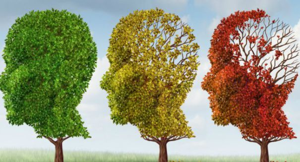 Breakthrough discovery may lead to re-booting memories for Alzheimer patients
