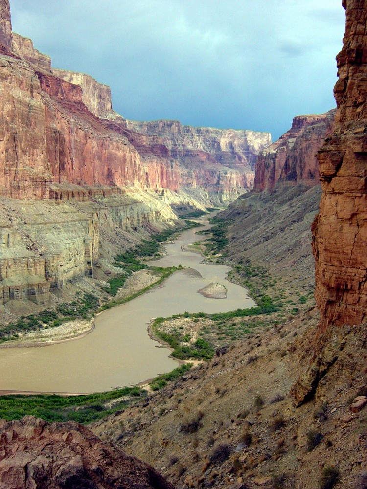 Food webs in the Grand Canyon compromised by Mercury and Selenium pollutants