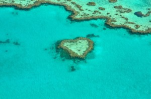 Something massive is happening at the Great Barrier Reef