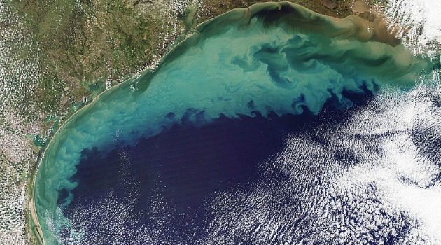 Gulf of Mexico's dead zone could be the size of Connecticut