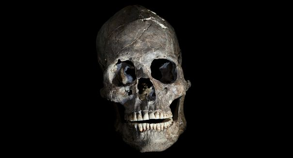 Ancient skull discovery amazes scientists