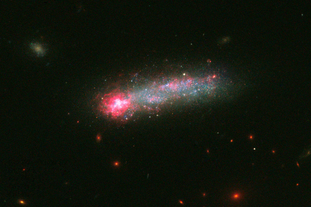 Hubble Space Telescope finds rare tadpole galaxy