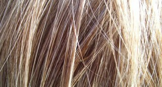 Scientists stunned by hair loss treatment discovery