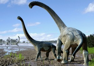 Scientists stunned by massive discovery about dinosaurs