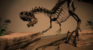 Huge dinosaur discovery in China stuns scientists