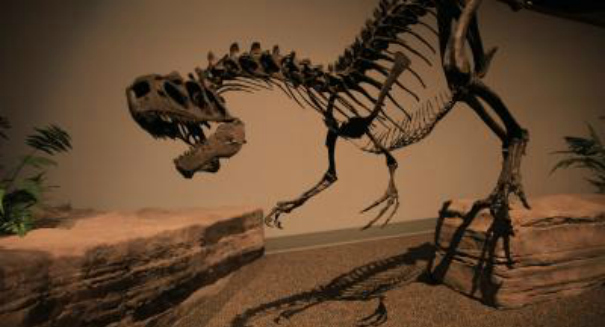 What drove the dinosaurs out of Europe? You may be surprised