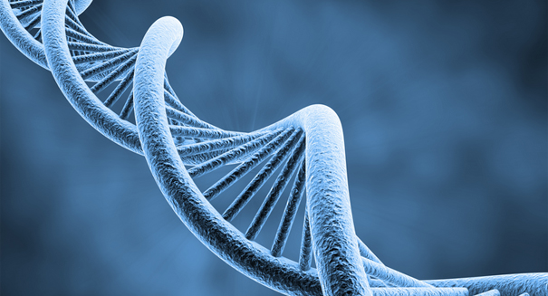 Mixed response: Scientists announce plans to create synthetic human genome