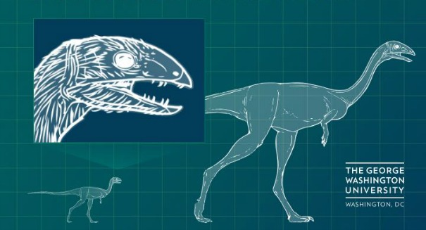 Scientists shocked by dinosaur discovery