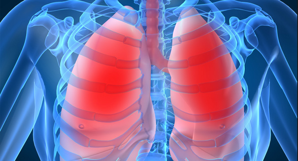 Researchers in Texas engineer artificial lungs
