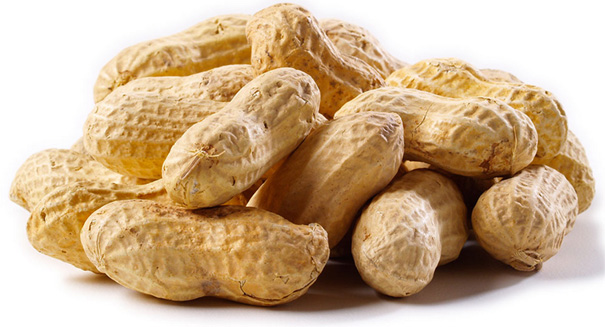 Study reveals the key to preventing peanut allergies