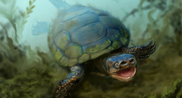 Scientists stunned by ancient pig-snouted turtle fossil found in Utah