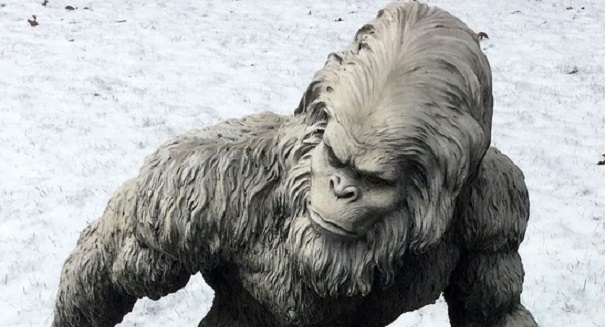 The shocking truth about the Yeti